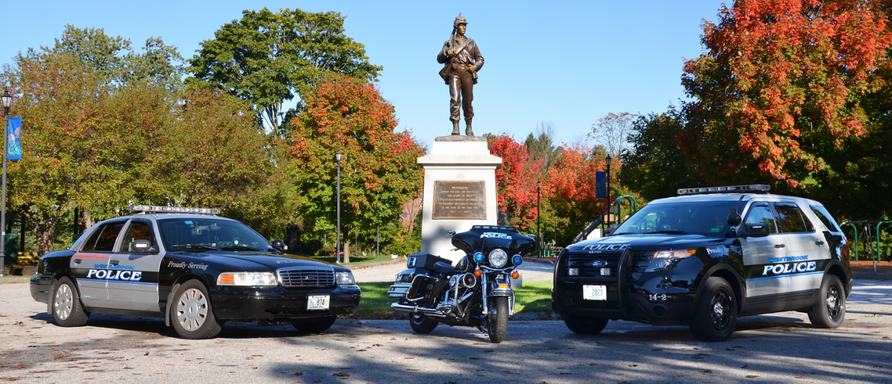 Police Vehicles and Motorcycle Parked Near Statue